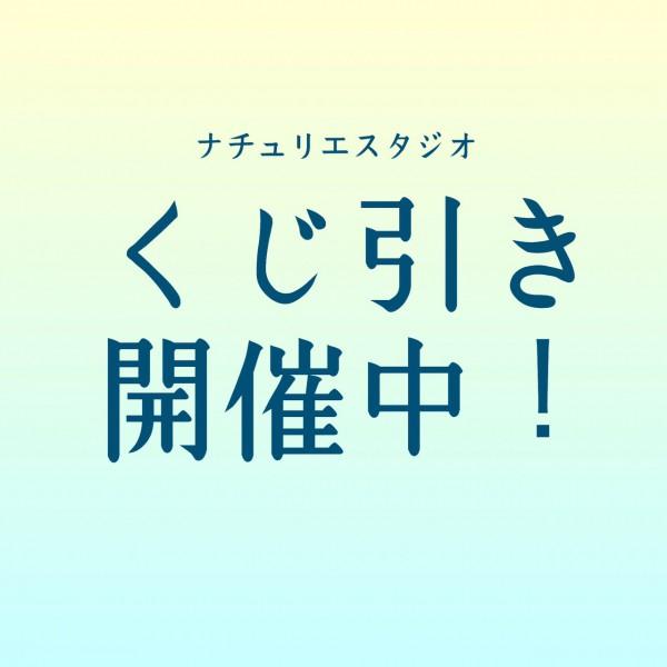 NTSくじ引きTOP